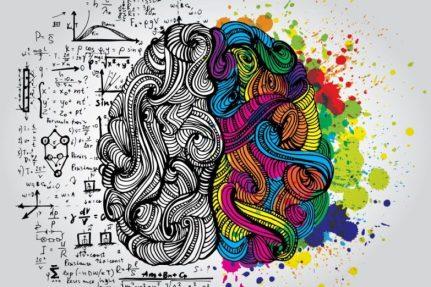 right-brain-left-brain-900-600-783x522